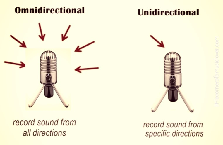 microphone's-directional-response
