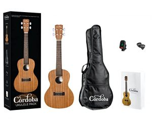 Top 5 Best Concert Ukulele for Beginners on Amazon - the Best value concert ukulele for the money
