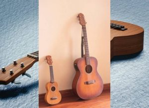 Difference between guitars and ukuleles