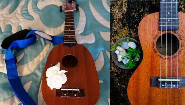 Pineapple Ukulele Vs Standard: Which One Should You Choose